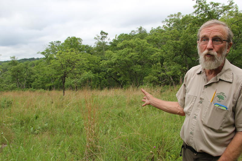 Missouri Botanical Garden restoration biologist James Trager standing at one of the naturally-occurring glades in the Shaw Nature Reserve.