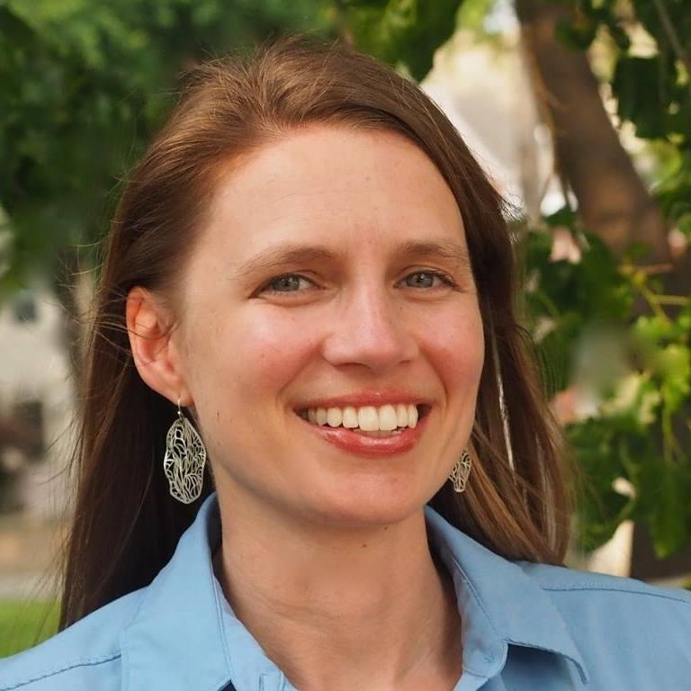 Heather Navarro will serve at least two years on the St. Louis Board of Aldermen for the 28th ward.