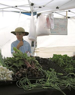 A vendor with Silent Oaks Farm at Clayton Farmers Market. 300 pixels. 2008