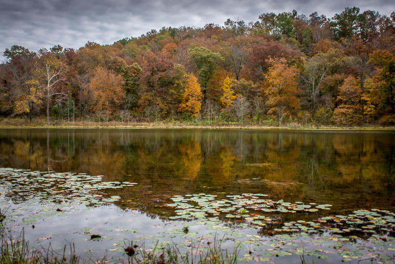 McCormack Lake in the Mark Twain National Forest. Nearly 100 Missouri school districts contain parts of the federal land but can't collect property taxes on it.