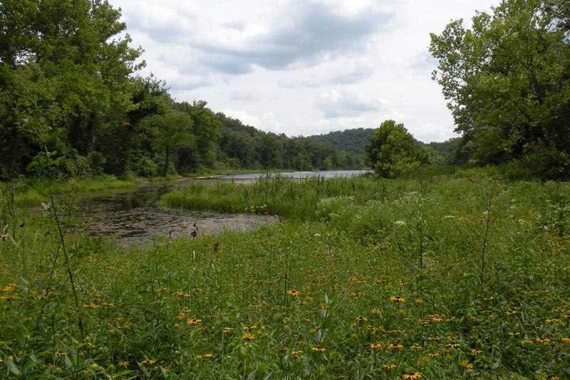 Nearly 100 Missouri school districts contain parts of the Mark Twain National Forest but can't collect property taxes on it. A program splitting timber revenue profits between the U.S. Forest Service and those schools was renewed.