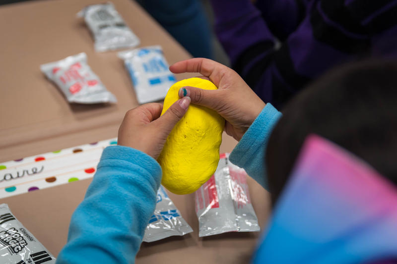 Aarvi Patel, 8, a student at Stanton Elementary School in Fenton, molds a model of the brain for the Little Medical School after school program.