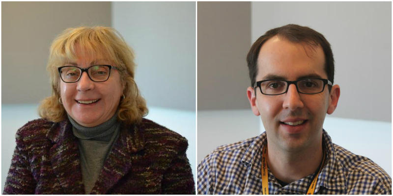 St. Louis Public Radio political reporters Jo Mannies and Jason Rosenbaum talked about issues in the run-up to the primary election on Tuesday.
