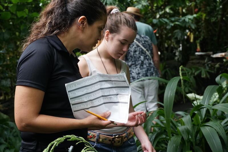 Researcher Mónica Carlsen-Krause and high school student Gabrielle McAuley in the Missouri Botanical Garden's Climatron, the garden's greenhouse that mimics a tropical rainforest.