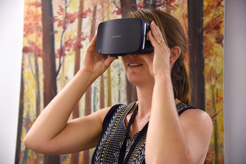 A new virtual-reality program through the St. Louis County Library will give residents the chance to explore a variety of places.