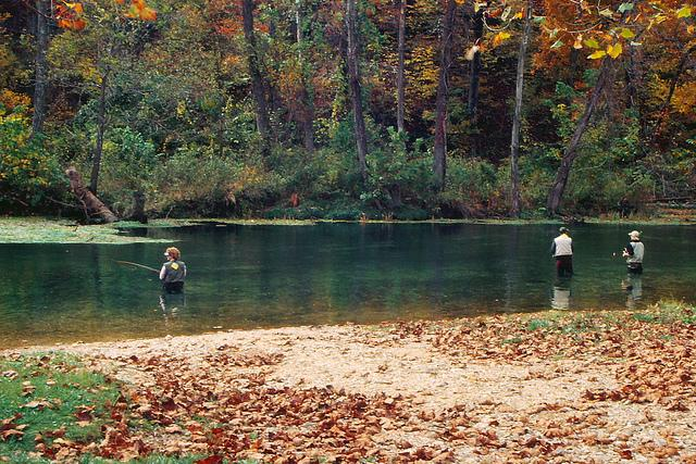 Trout fishermen in Bennett Springs State Park. An report from state auditor Tom Schweich has given the division that oversees Mo. state parks low marks.