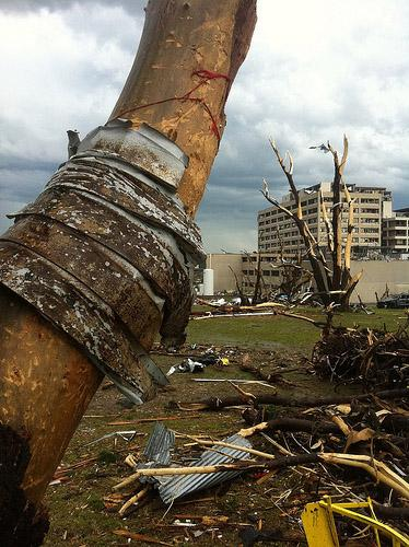Metal is wrapped around a tree near Saint Johns Hospital in Joplin, Missouri  on May 23, 2011. A  deadly tornado hit the small Missouri town on May 22, 2011.
