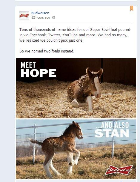 The post on Facebook announcing that the company would name not one foal, but two.