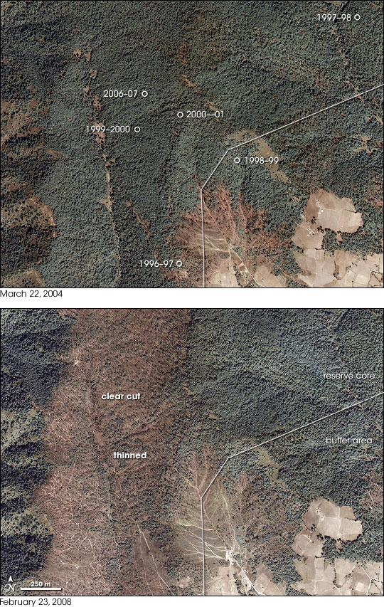 These images were taken by the commercial Ikonos satellite.