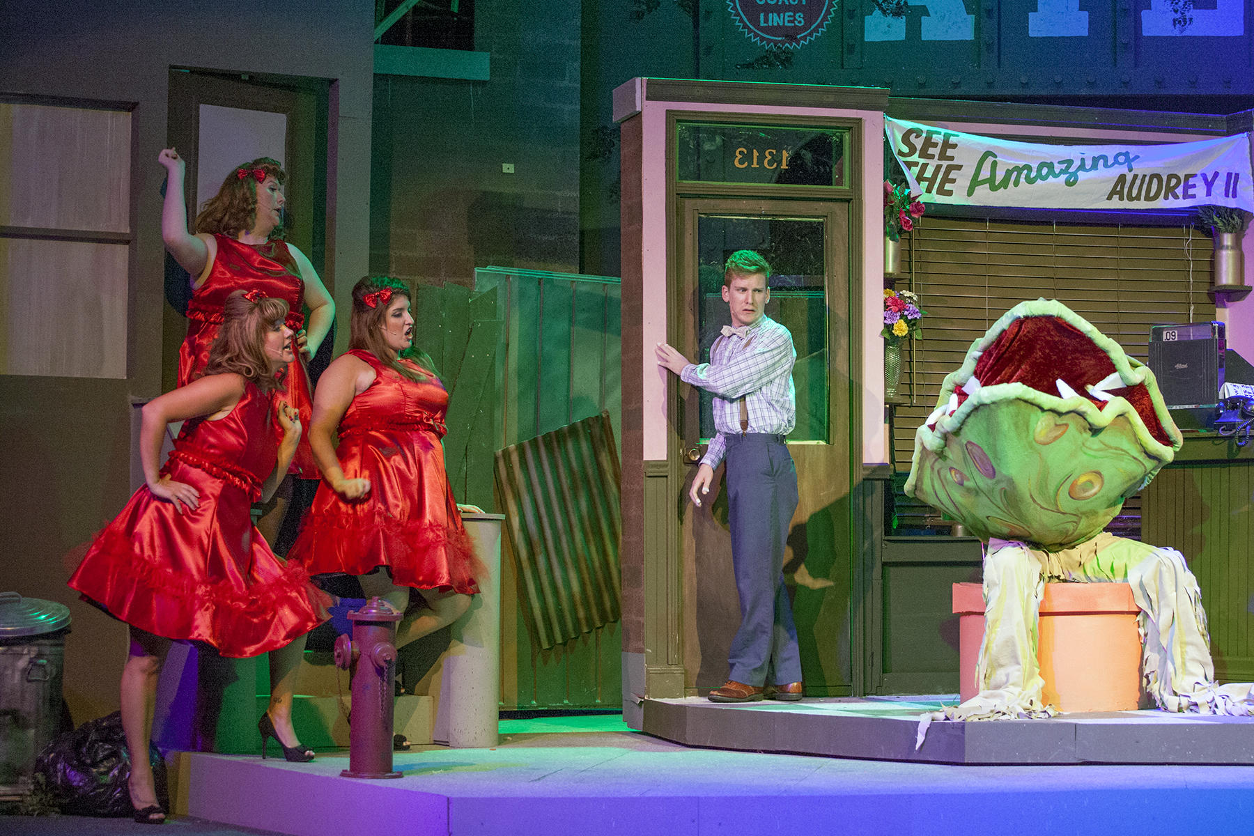 a review of little shop of horrors at the lyric opera theatre Read chris jones' 'little shop of horrors' review audrey ii can be seen swallowing up most of the downstairs theater at the greenhouse theatre center in chicago.
