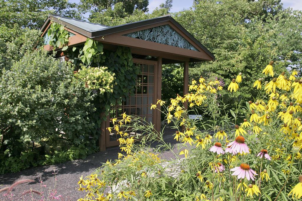 Missouri Botanical Garden Wins Grant For Imagine Program St Louis Public Radio