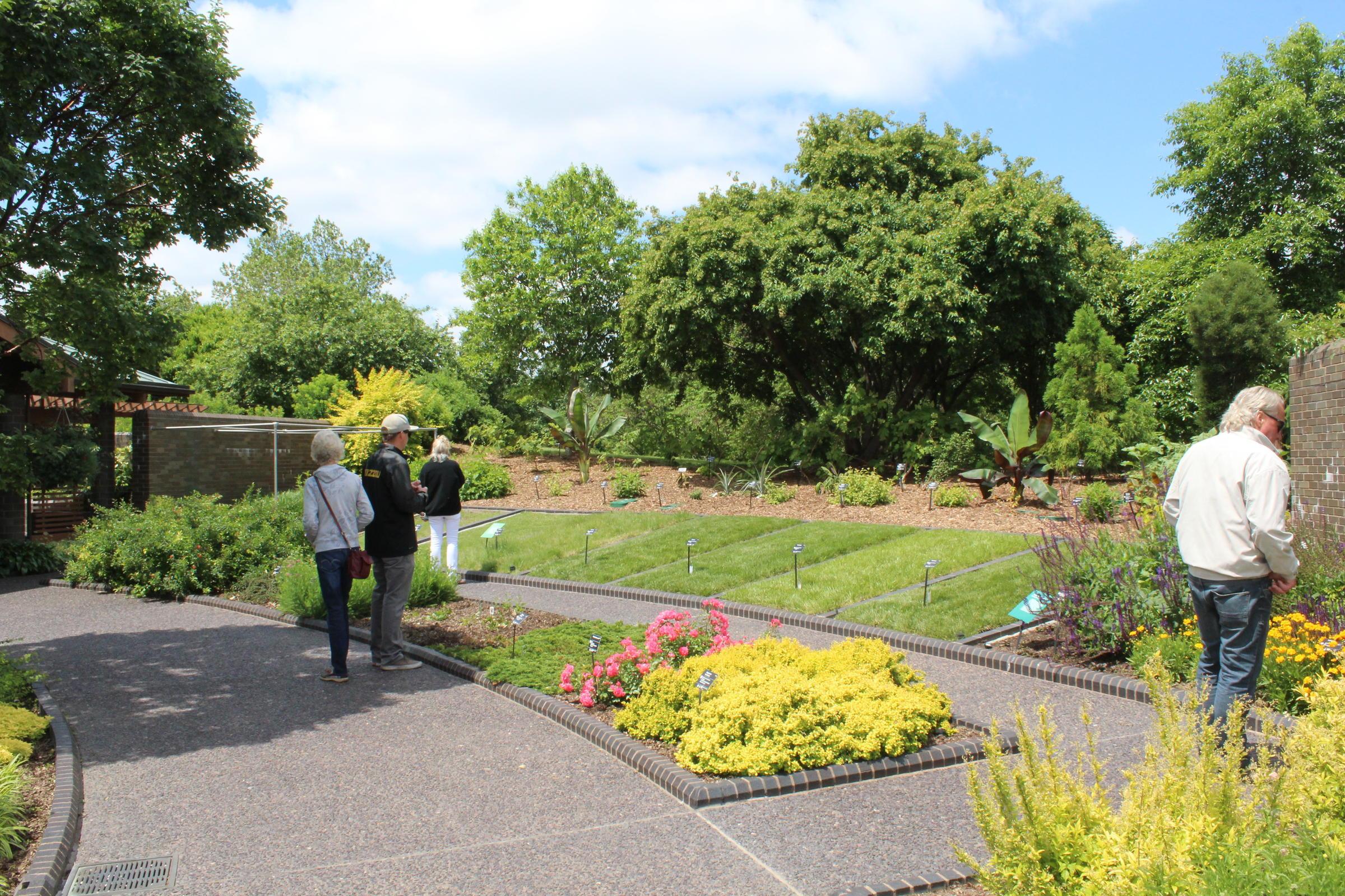 Local gardening hacks help green St Louis region