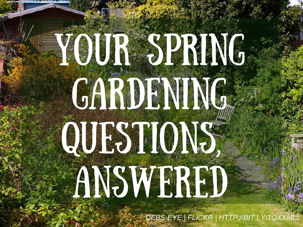 Your questions answered how to get a head start on your for Gardening questionnaire