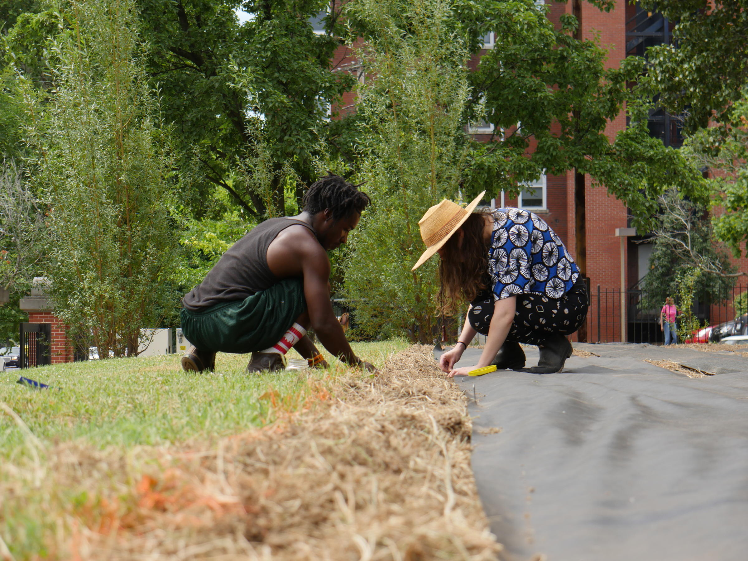 How urban agriculture projects in st louis are investing in more than just food st louis - Gardening works in october winter preparations ...