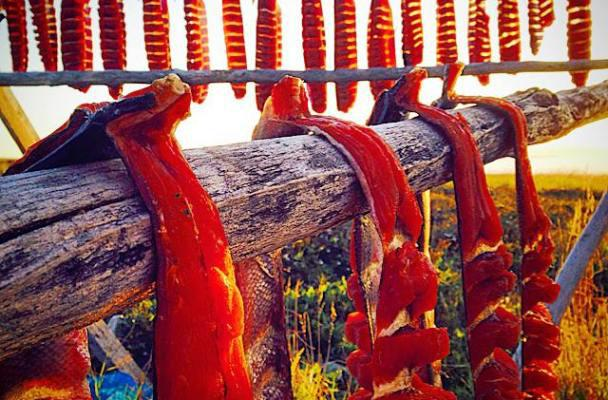 Salmon drying on a fish rack.