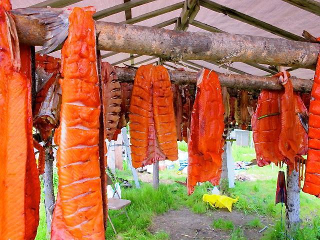 Salmon drying on a Kuskokwim fish rack.