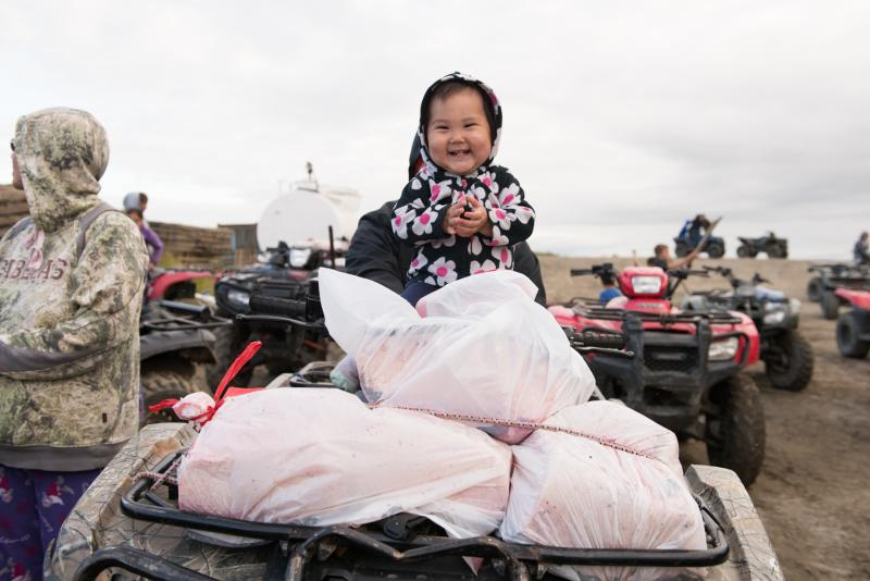 The whale killed in the Kuskokwim River on Thursday night is butchered and the meat and blubber distributed to people in white garbage bags on Saturday, July 29, 2017.