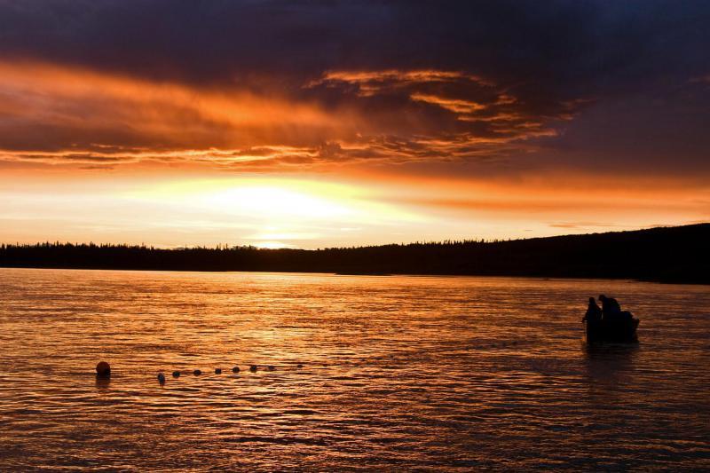Gillnet fishing on the Kuskokwim River near Aniak.