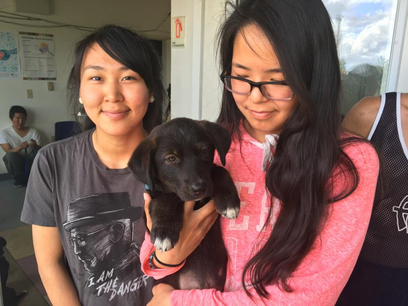 Two girls in Kwethluk wait with a puppy at the local fire station, where three vets from the non-profit Alaskia Native Rural Veterinary were working for the day.