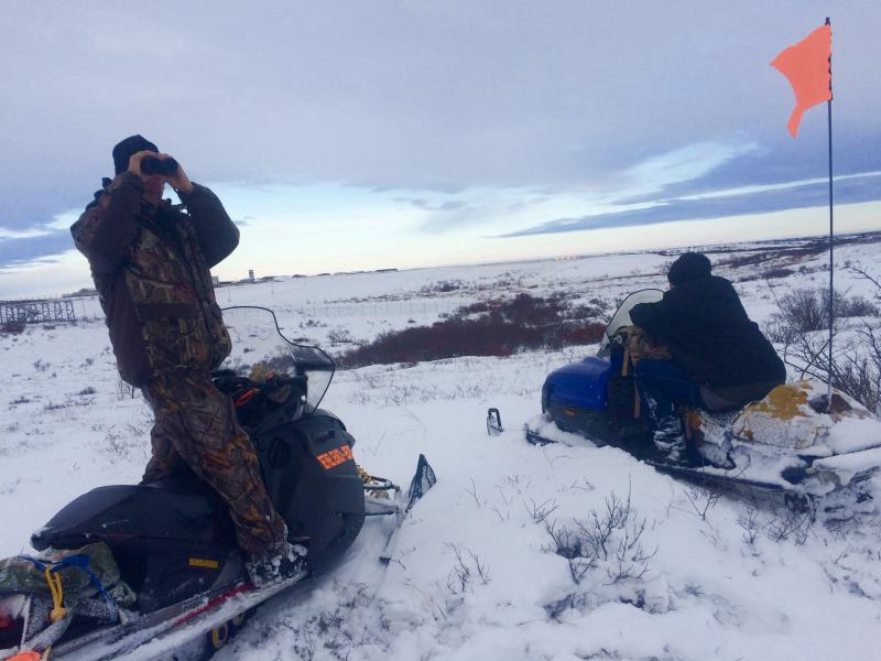 Bethel Search and Rescue members scan the tundra looking for signs of animals scavenging on November 28, 2017, hours before Robert Nick was found. The Bethel runway lies in the background.