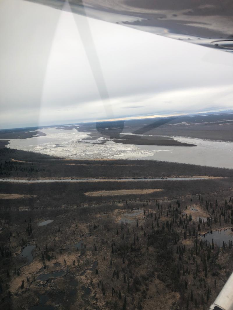 Small jam still holding at Unduu's Island below Tuluksak, AK. Water is flowing freely through the slough along the east bank. Photo taken on May 8, 2018.