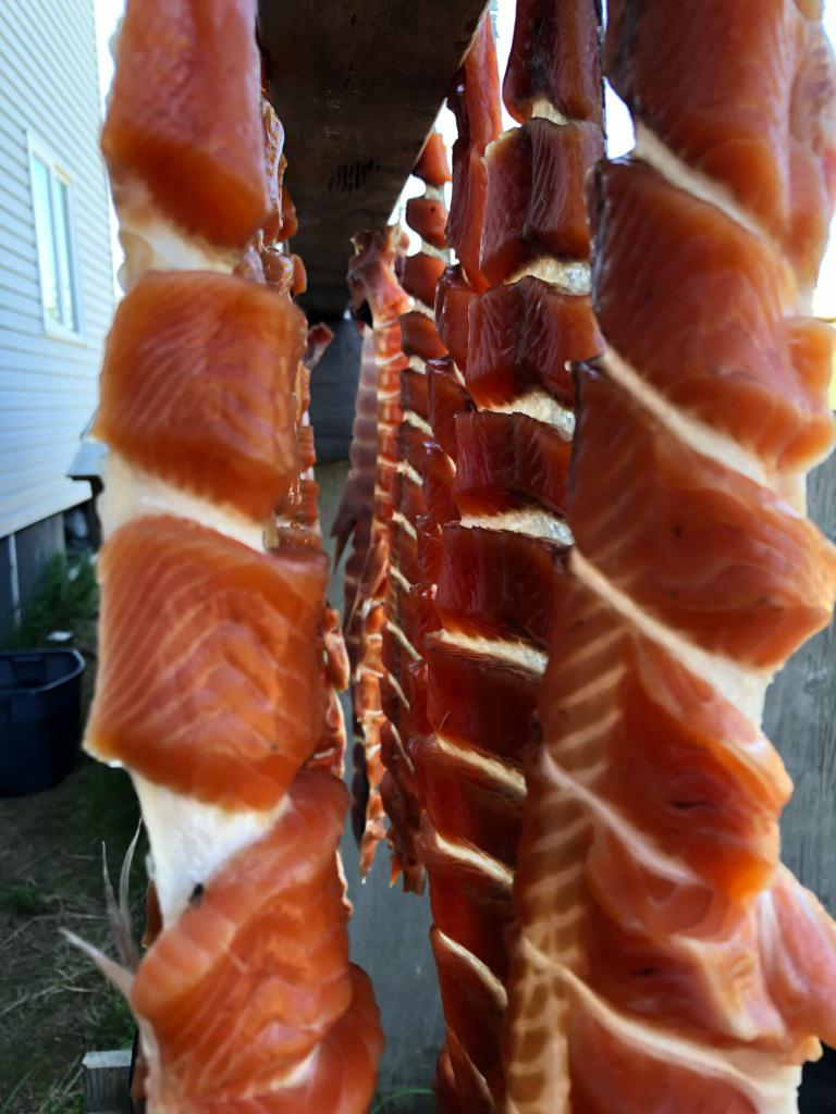 Fish drying, cut by Petra Harpak on June 12, 2018.