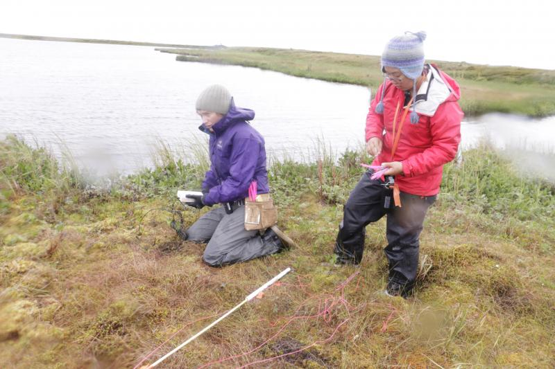 Students spend long hours in the Yukon-Kuskokwim Delta documenting how climate change is impacting the tundra.