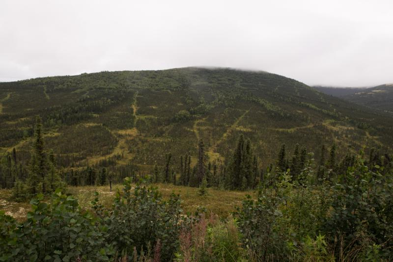If completed, the proposed Donlin Gold project would be one of the biggest gold mines in the world.