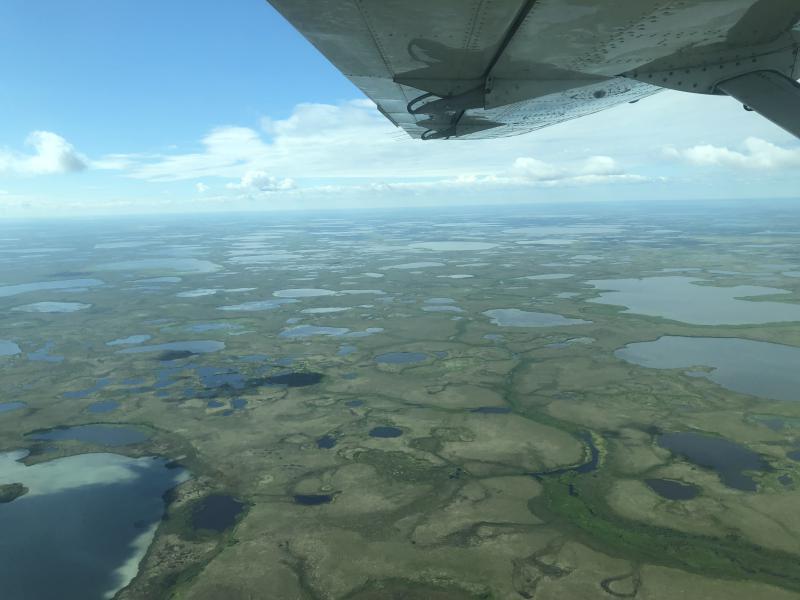 Yukon-Kuskokwim Delta.