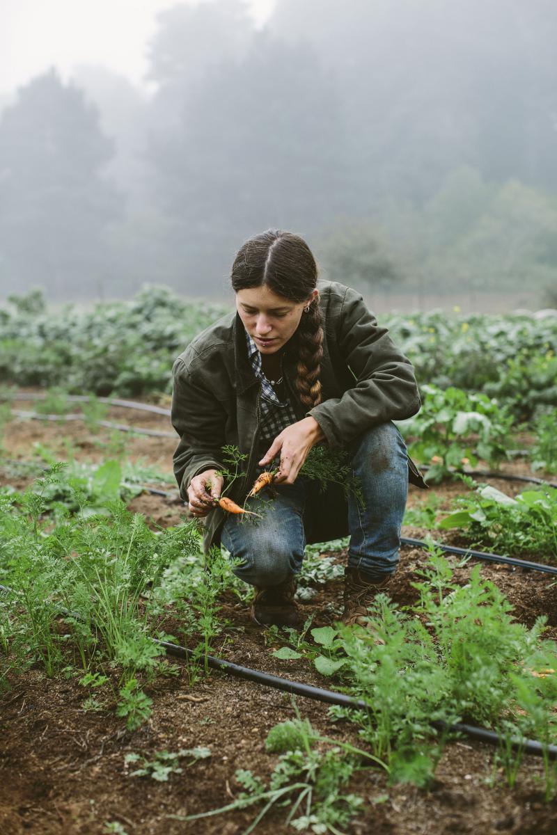 Gowan Batist of Fortunate Farm