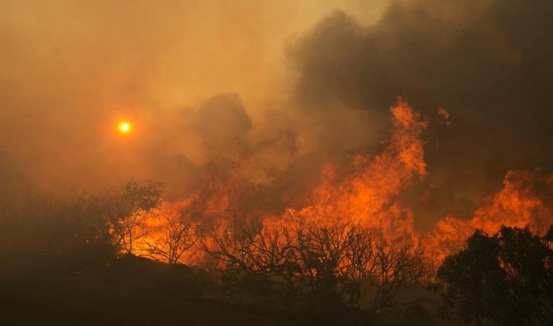 Protecting And Managing Your Fire Insurance Payout, Wednesday 7pm On Mendocino Works