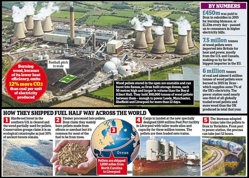How spending billions on subsidising an efficient coal-burning power station to burn wood is actually WORSE for the planet than before