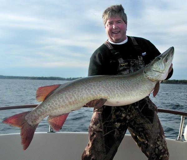 detroit big fisch: