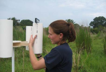 PhD candidate Laura Sherman setting up a rain collector in Crystal River, Florida.