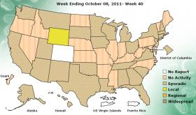 Weekly influenza activity across the U.S. and its territories. Michigan is listed as &quot;sporadic.&quot;