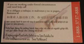 Photo of: a multi-language card with the Polaris Project hotline phone number.