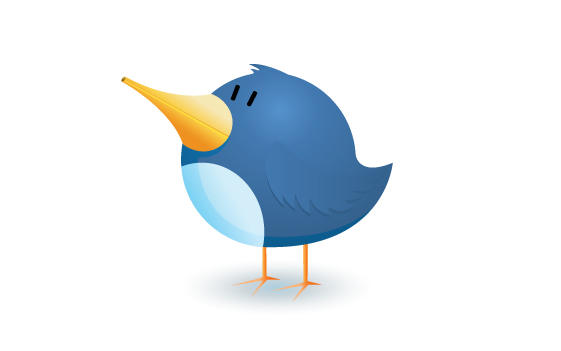 Twitter bird logo icon illustration