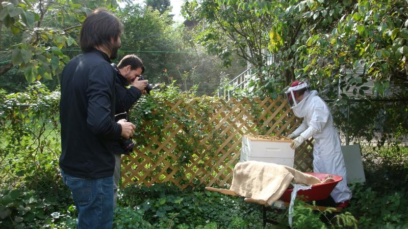 Roman Blanquart and Brian Widdis snap photos of an urban beekeeper for their project, Can't Forget the Motor City