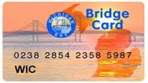 Michigan's Bridge Card, which provides food and cash assistance benefits.