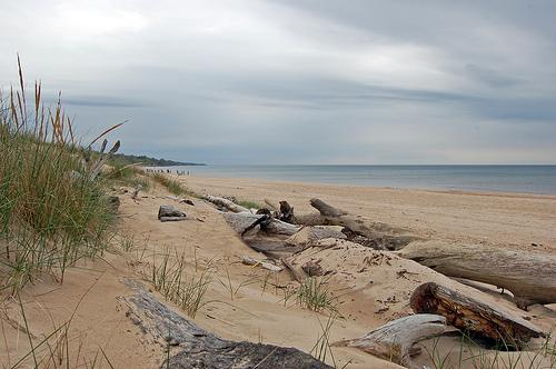 BeachGuard tracks the water quality and closures of Michigan's public beaches.