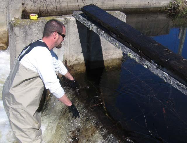 Chris Pierce painstakingly removing part of a dam on the Manistee River.