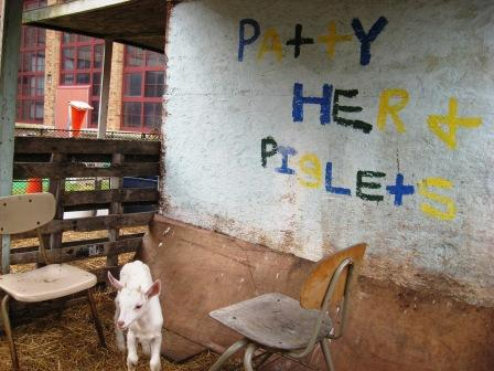 The farm at Catherine Ferguson Academy has baby goats, as well as other animals.