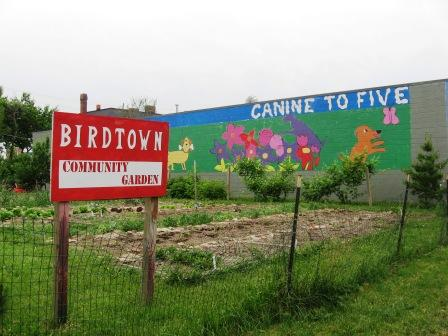 Canine to Five wants to expand into the lots adjacent to its current building, a site community gardeners have long beautified.