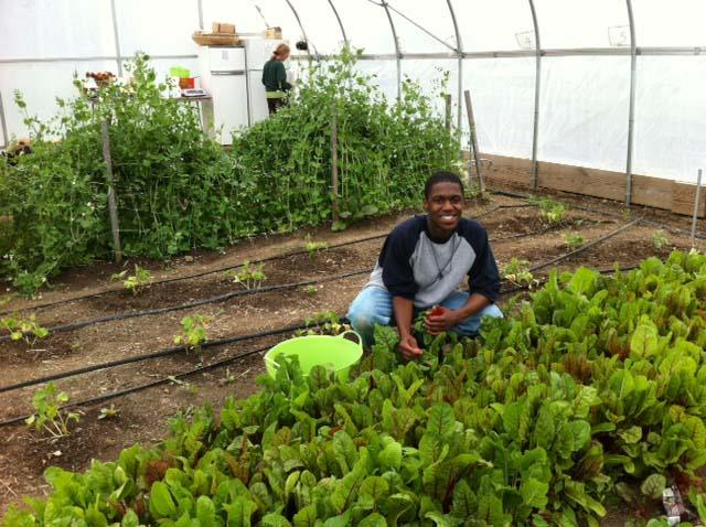 Hakim Gillard works at the Harvesting Earth farm and he also works at King Karate in Flint.