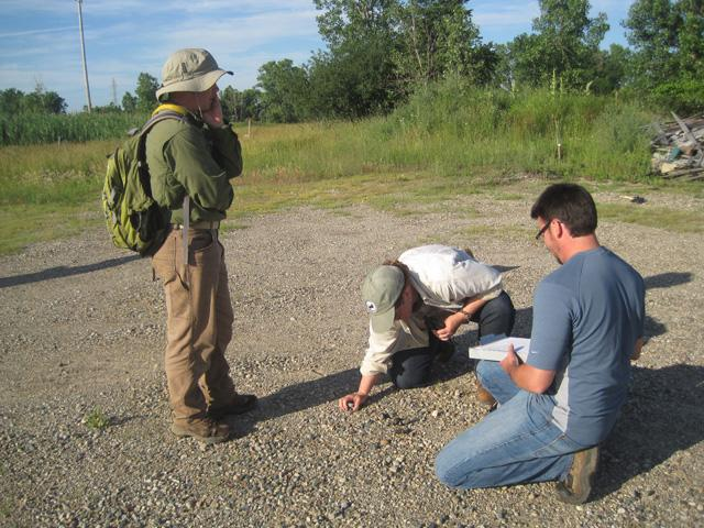 The researchers find and log the location of coyote scat in Oakland County.