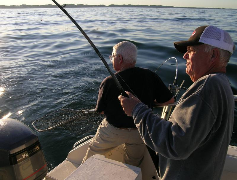 Former Michigan Department of Natural Resources fisheries chief John Robertson (l) and fishing partner Dale Wilkinson (r) work to land a Chinook salmon on Lake Michigan.
