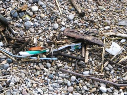 A toothbrush is one piece of trash that traveled from Wisconsin to a beach in West Michigan.
