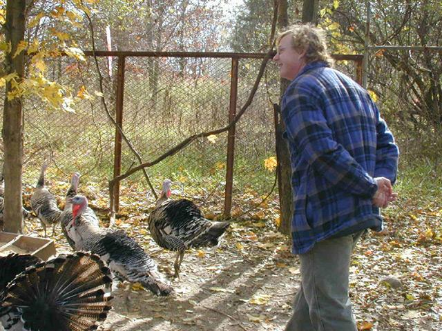 John Harnois gobbles to the turkeys and the turkeys respond in unison. We collected the sound for your phone.