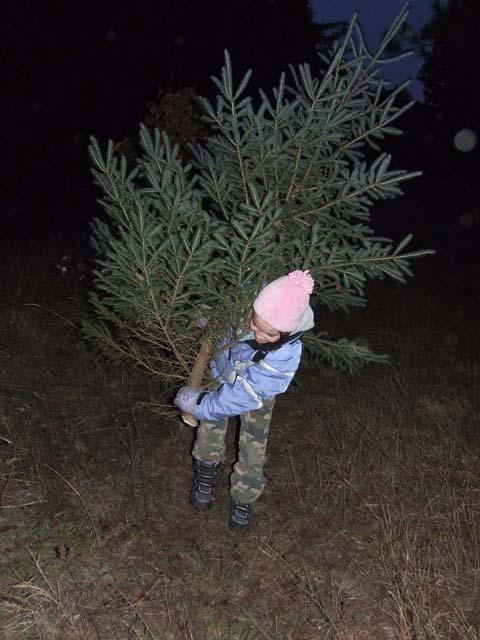 Amelia Payette, age 9, with the tree her family decided to cut down.