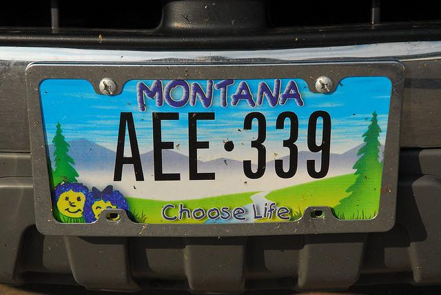 "According to a report from the Guttmacher Institute, 25 states offer ""Choose Life"" plates."